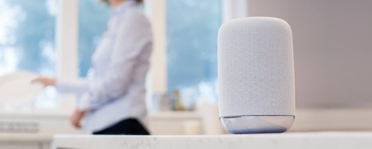 Artificial Intelligence and Voice Assisted Devices in Today's Marketplace